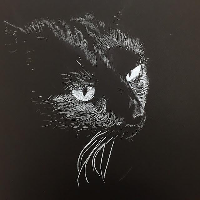 drawing white color pencil on black jennifer cameron