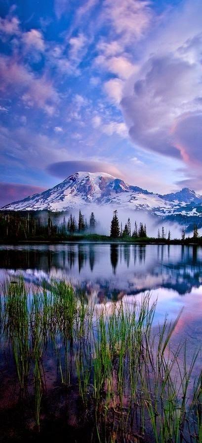 Reflections, Mt. Rainier National Park, Washington | Paul Bowman Photography!