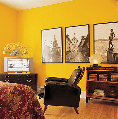 photos that will help to inspire you with ideas for painting the walls