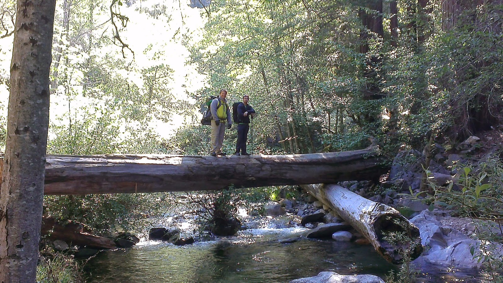J.T. Hatley's Backpacking Blog: Big Sur- Pine Ridge Trail ...