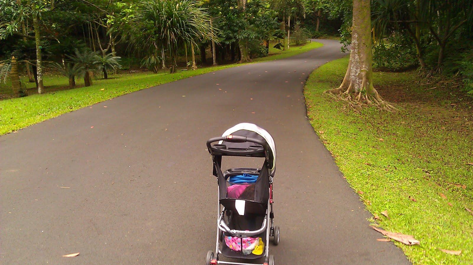 Oahu Family Activities: Ho\'omaluhia Botanical Garden