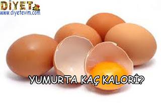 yumurtanın kalori değeri