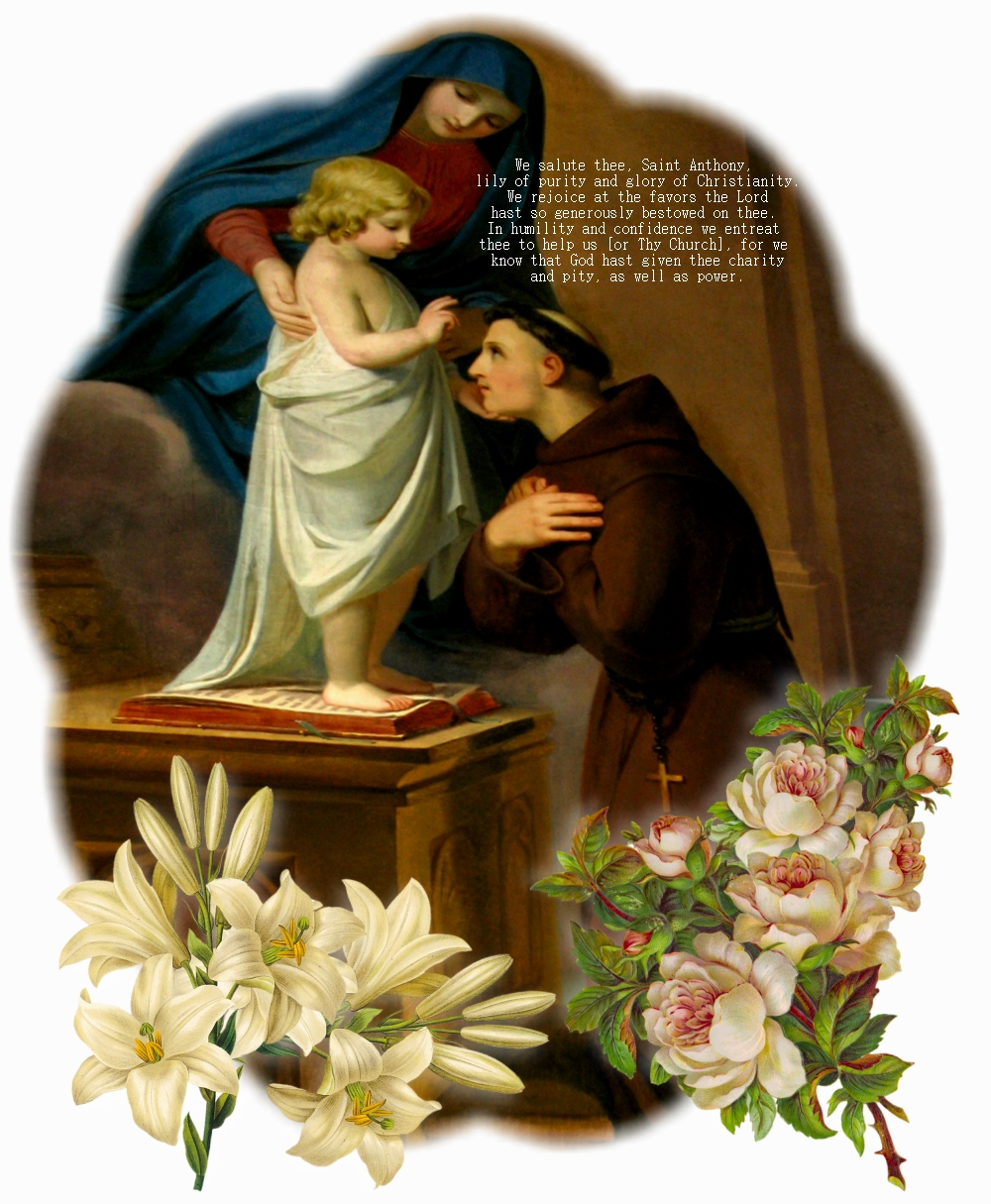 How to Say a Novena to St. Therese the Little Flower