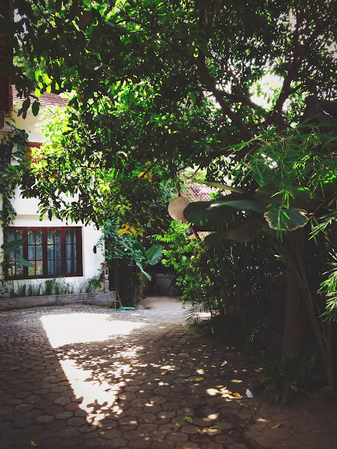 Tigalima Homestay - Driveway