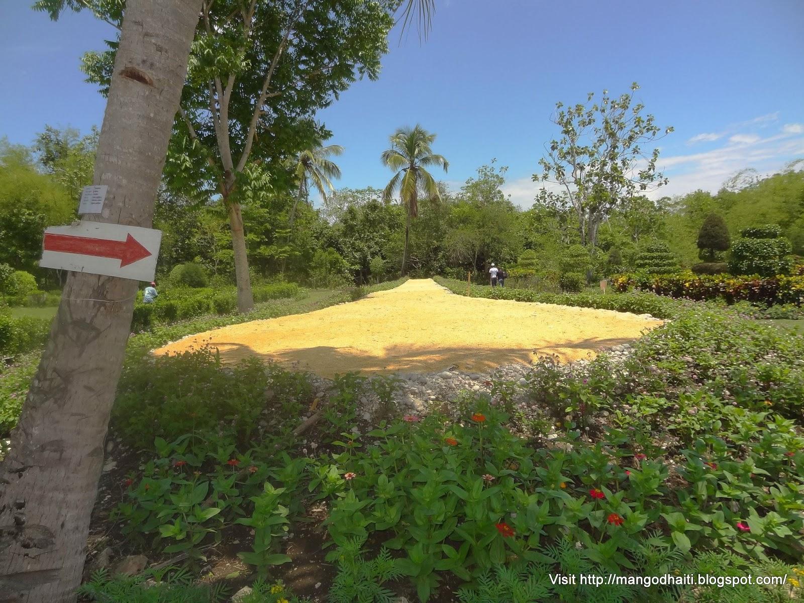 Renaud duvivier le jardin botanique des cayes samedi 27 for Camping le jardin botanique limeray