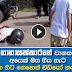 Manusha Nanayakkara cab accident - Video