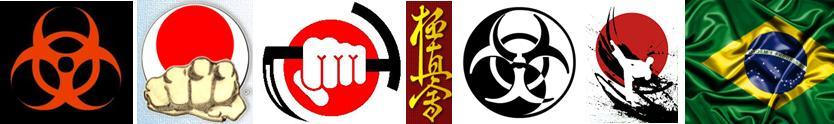 Ando Te Ashi Do Karate Kung Fu Taekwondo Capoeira Artes