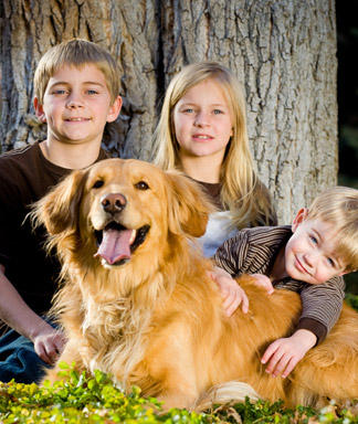 Dog Breeds for Kids
