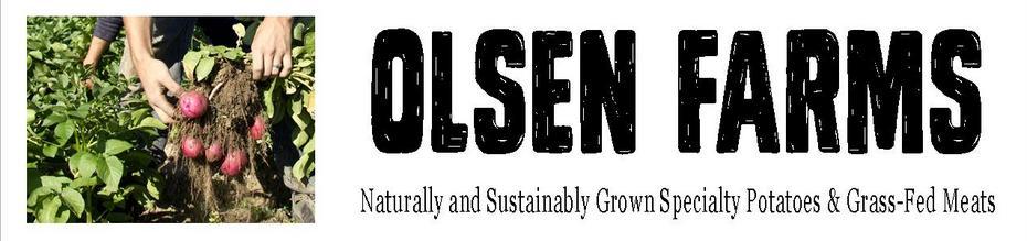 Olsen Farms