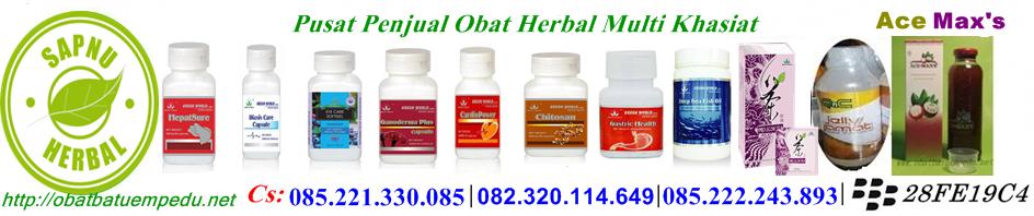 Putri Distributor Resmi Obat Herbal