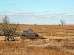 """Prairie Farmers Pride"""