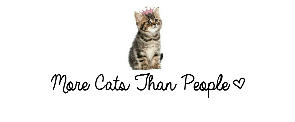 More Cats Than People