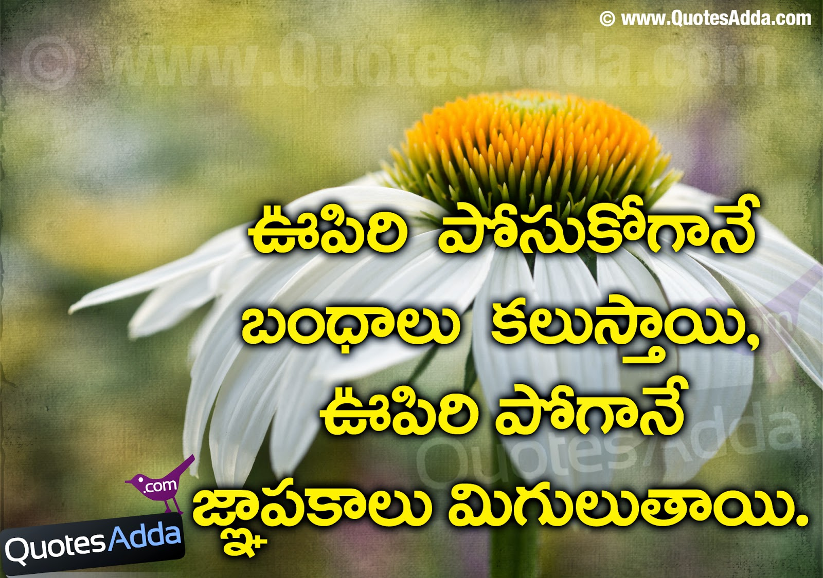 beauty of nature essay in telugu
