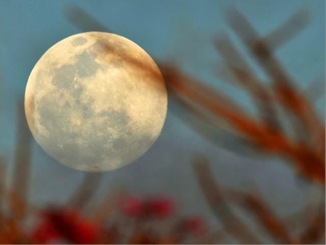 Gratis en buenos aires tambores en luna llena planetario for En q luna estamos hoy