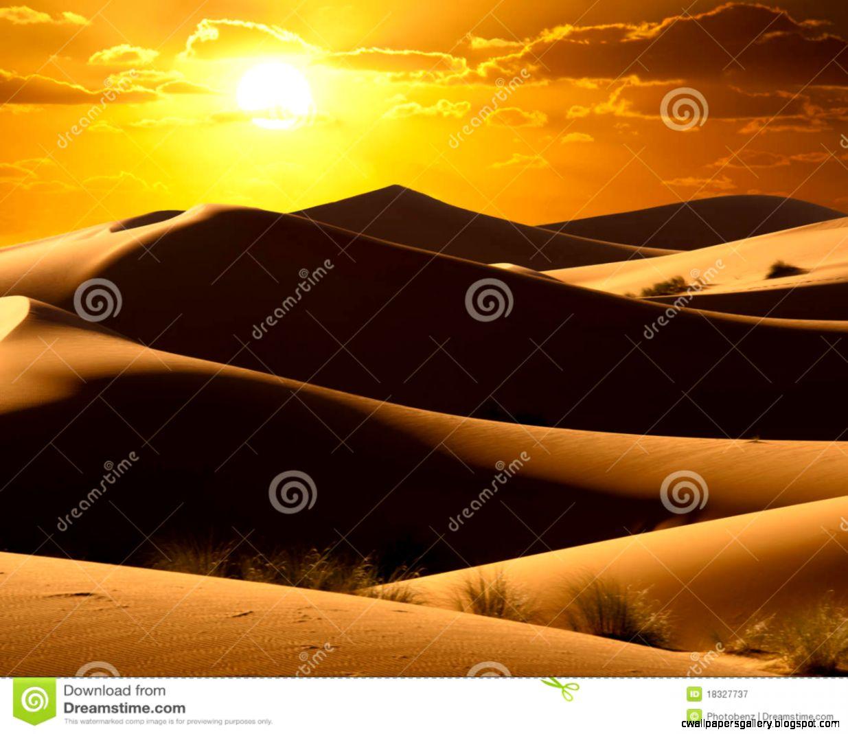 Orange Desert Sunrise Royalty Free Stock Photography   Image 18327737