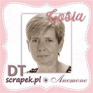 Scrapek.pl - Anemone
