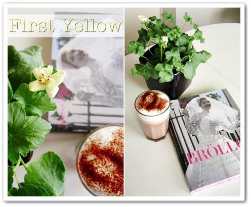 årets pelargon, pelargon first Yellow, Bok vintage bröllop mode & stilar under 100 år