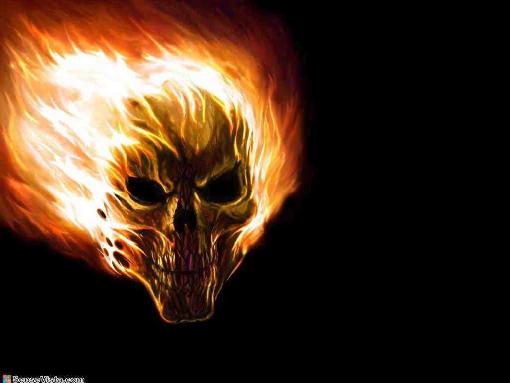Great Wallpaper Logo Danger - fire-skull-wallpapers-1  HD_436569.jpg