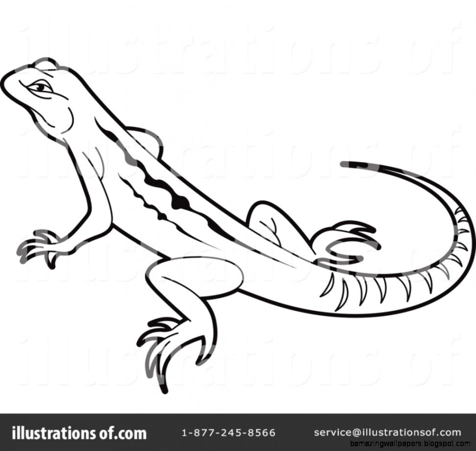 Lizard Clipart Black And White   Amazing Wallpapers for Lizard Clipart Black And White  61obs