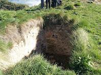 L'antiga cisterna del castell colgada de vegetació