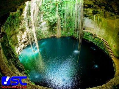 The Sacred Cenotes