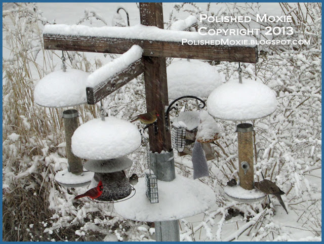 Picture of several different birds at a feeder in the snow.
