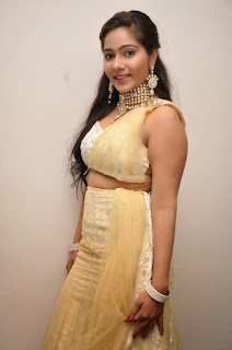 Actress Mitra  Pictures in Half Saree at DollorKi Maro Vipu Audio Launch  17