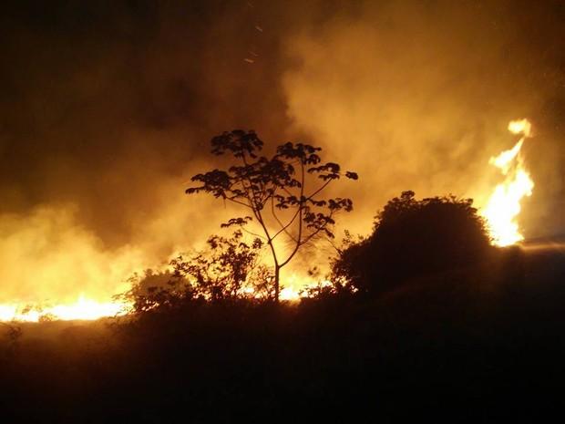 Forte incêndio atingiu região da Chapada em novembro (Foto: Edmar de Lima de Carvalho/ICMBio)