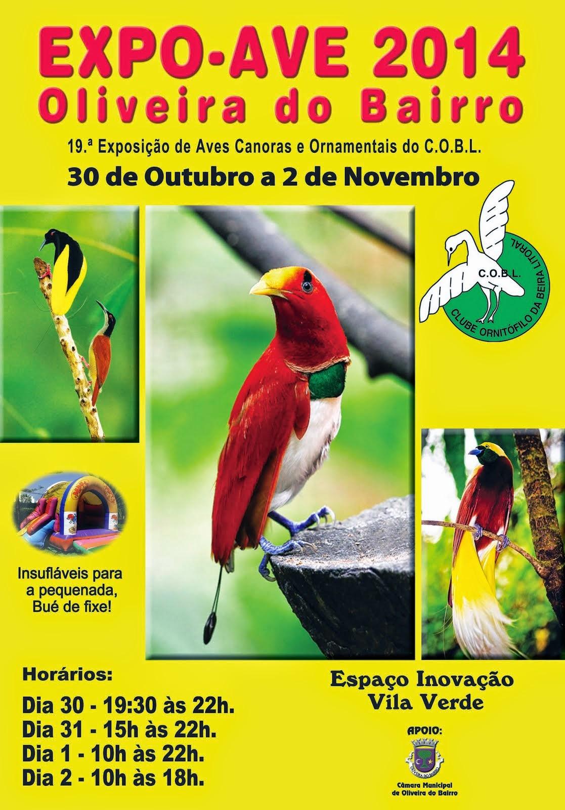 EXPO-AVE OLIVEIRA DO BAIRRO 2014
