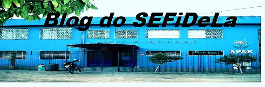 Blog da APAE Pelotas