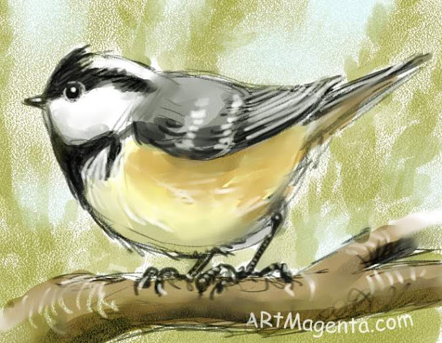 Coal Tit, a bird sketch by Artmagenta.