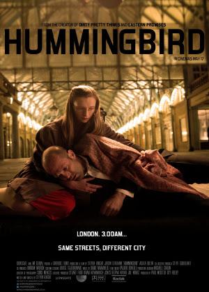 Chim Ruồi Hummingbird