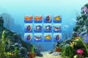 Deniz Hayvanları Hafıza Oyunu