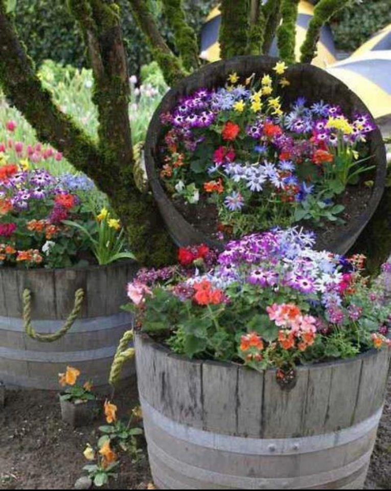 Id j parkas nerealios id jos sodo ar kiemo gro iui - Ideas originales para jardines ...