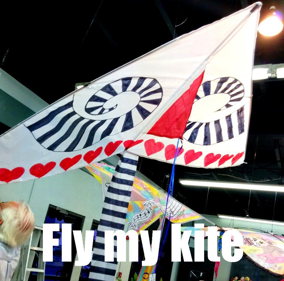 Fly my Kite...at the beach!