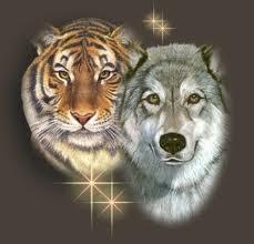 Harimau dan Serigala