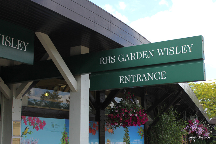 one little vice lifestyle blog: summer June July day trip to Wisley