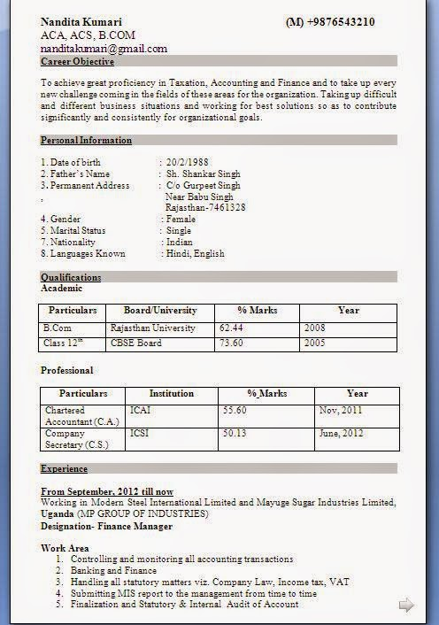 indian accountant resume