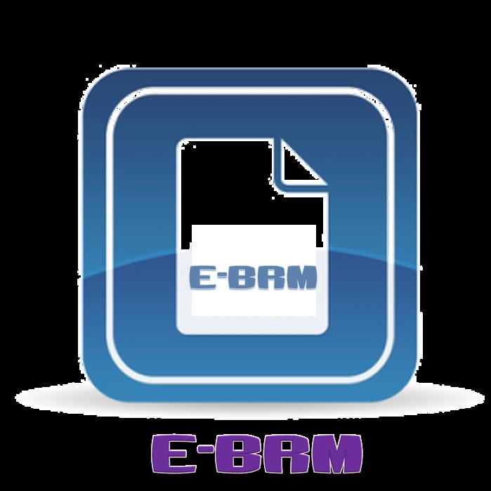 TEMPLATE E-BRM