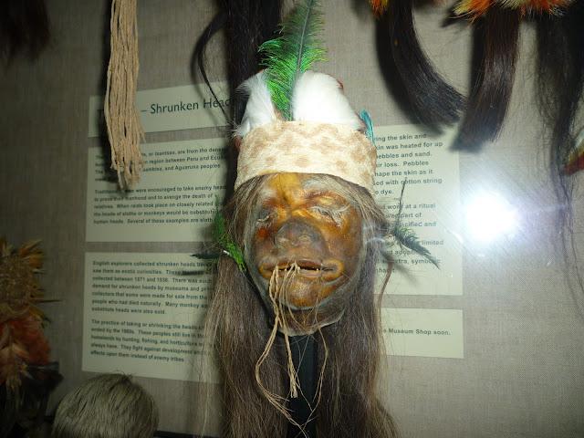 the pitt rivers museum via lovebirds vintage