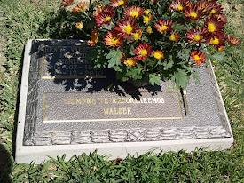 Siempre te recordaremos, Waldek