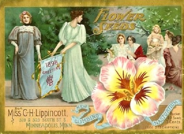 Miss C H Lippincott Catalog 1898