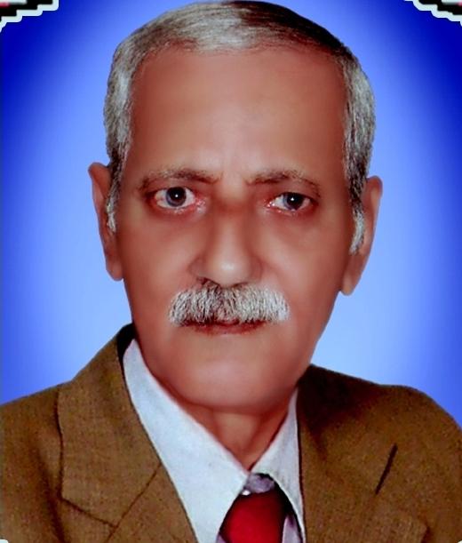 المدون محمد حافظ العفيفي