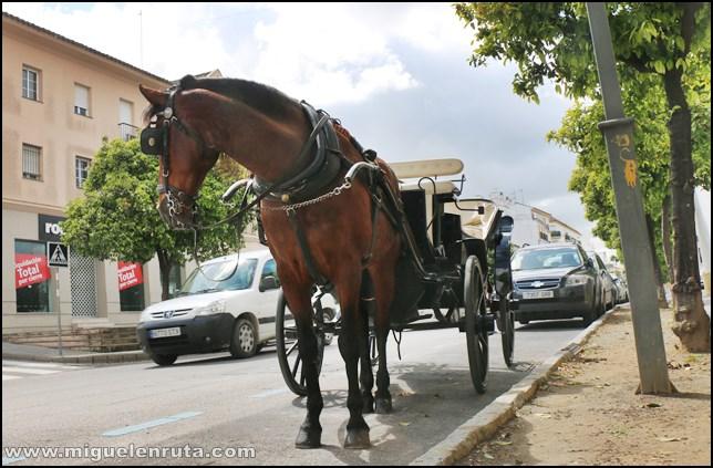 Calesa-Jerez-Coche-Caballos