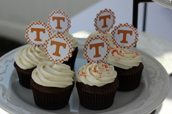 University of Tennessee Cupcakes