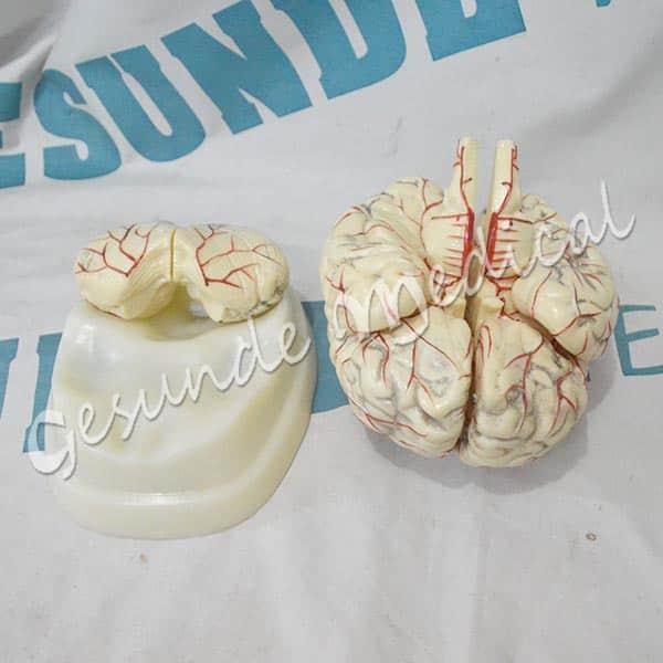 grosir torso otak gm-x308