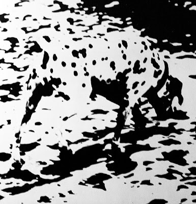 Black-and-white-spots-optical-illusion