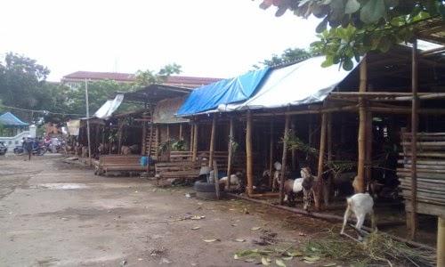 Pasar Kambing Silir Semanggi Solo