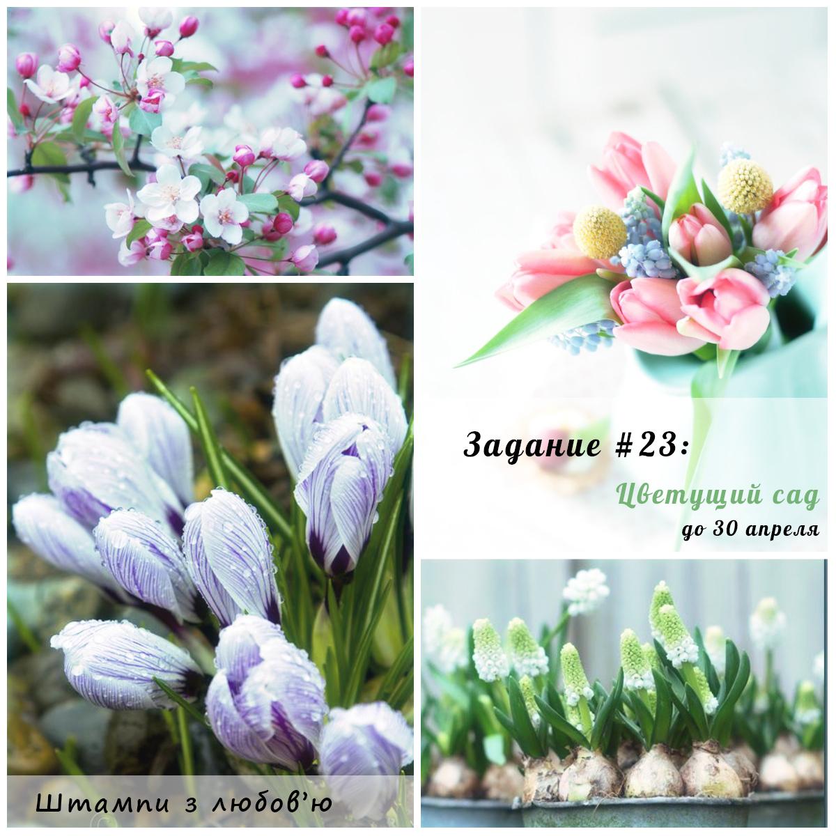 http://stampsforcrafts.blogspot.com/2015/04/23-23.html