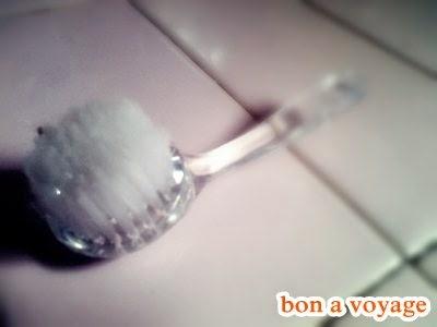Sikat Wajah - Face Brush